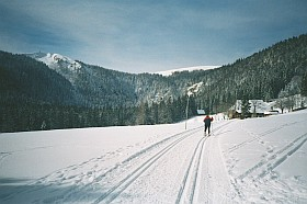 Cross Country Skiing and Winter Hiking
