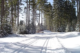 "Cross Country Skiing and Winter Hiking in ""Black Forest"""