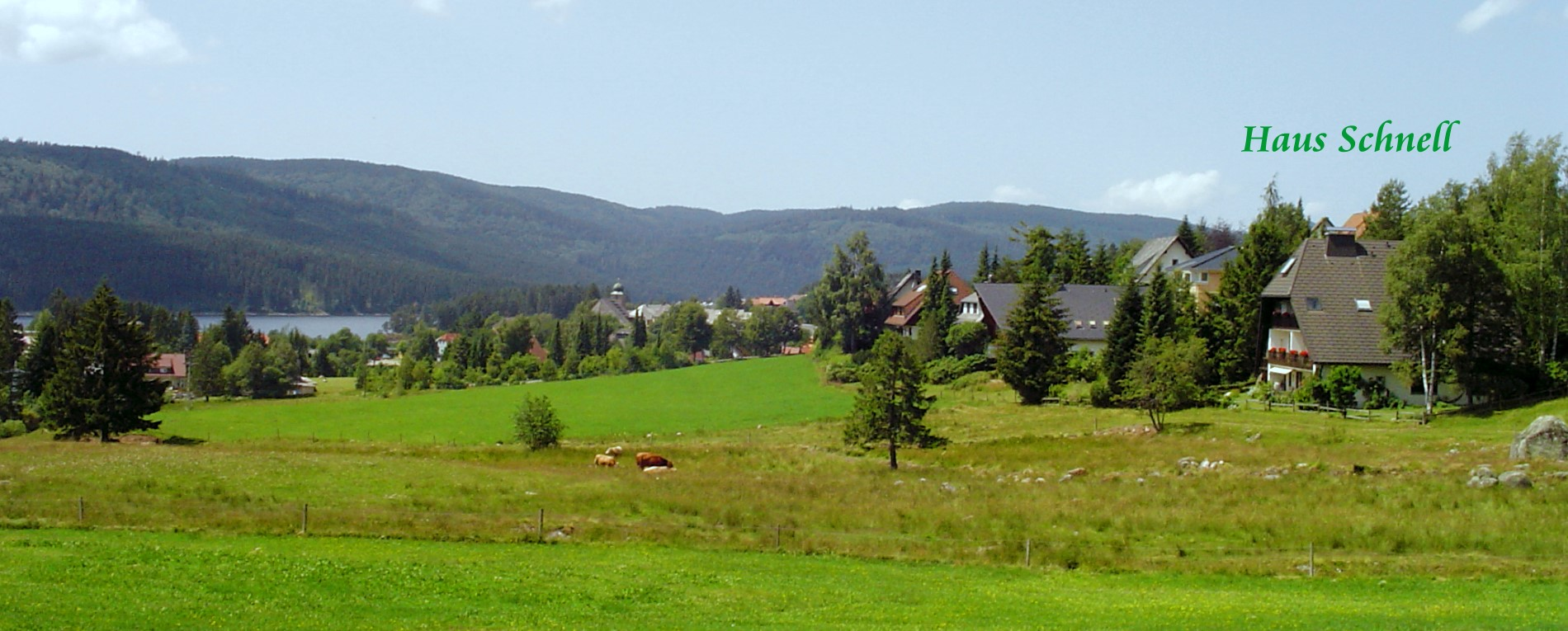 Holiday apartments in Schluchsee Black Forest Germany - Gästehaus Schnell